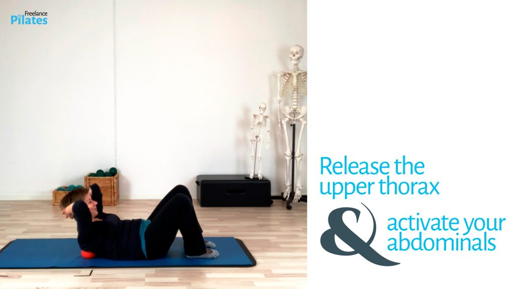 Release upper thorax